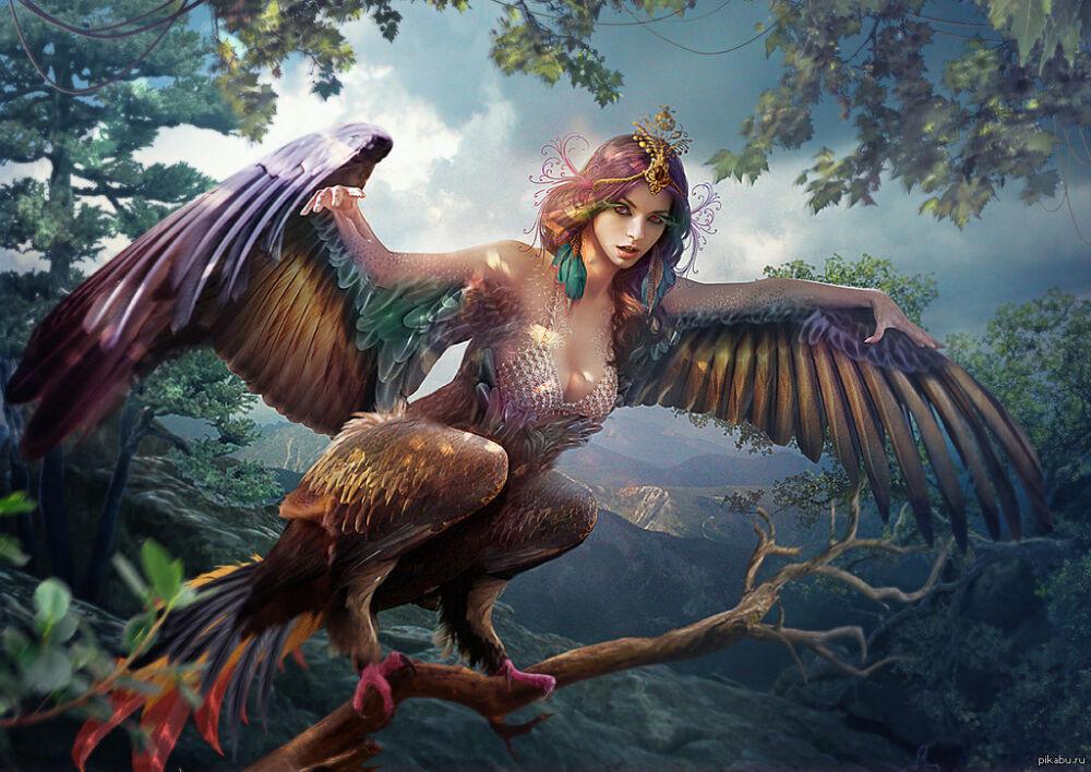 Райская птица - Сирина.