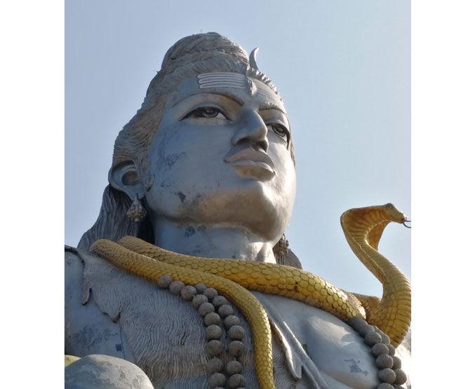Змея на шее